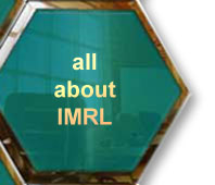 a description of Dr. David Hailey and IMRL