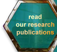 See the books and articles outlining IMRL's research.